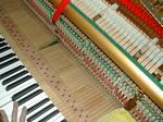 ピアノ調律 2.JPG