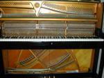 ピアノ調律 3.JPG